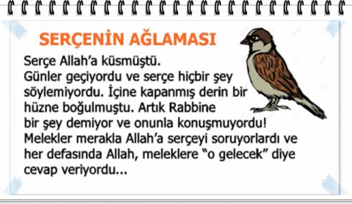 Serçe Allah'a Küsmüstü